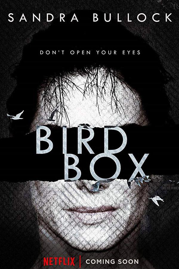affiche-bird-box-2018-1
